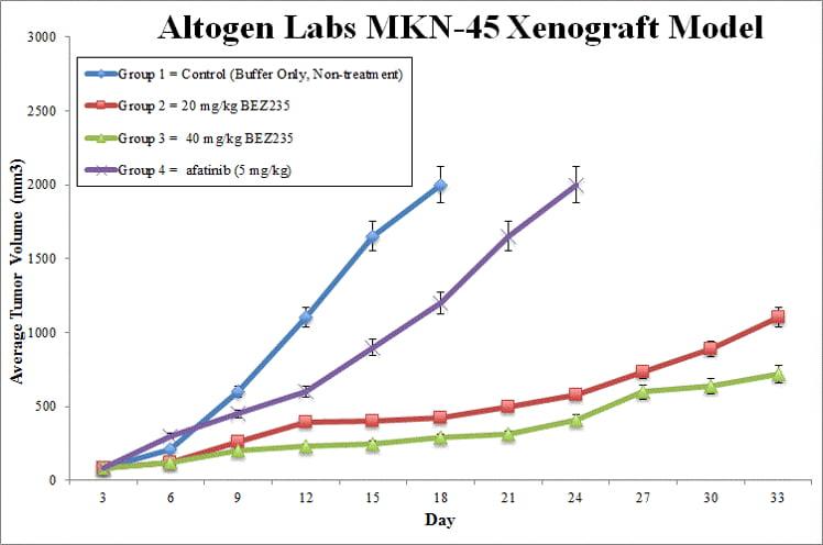 MKN-45 Xenograft Altogen Labs